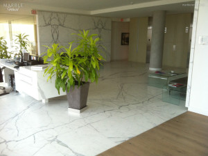 Tenant (Commercial) Reception, Honed Marble Floor - Scope of work: clean grout, sand, hone and protect floor with a penetrating sealer.